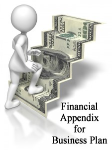 Financial Appendix for Business Plan kubassek.com